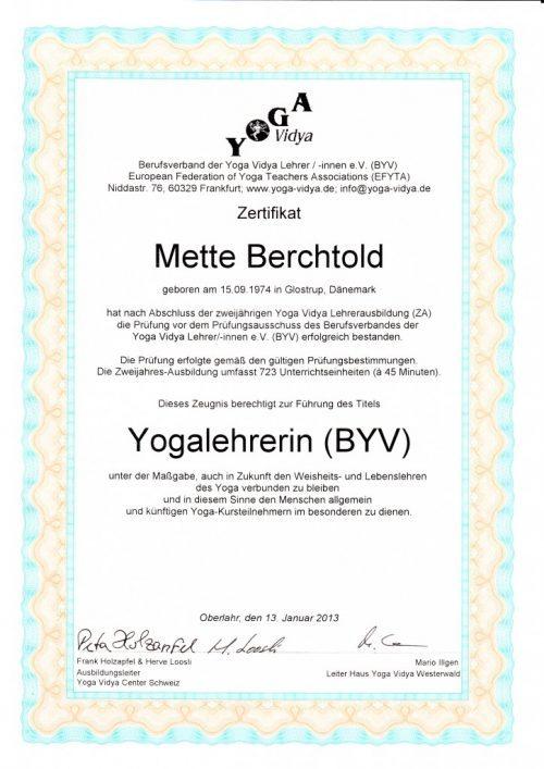 Yogalehrerin Ausbildung 2011-2013